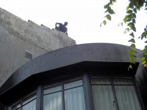 P6100424  statut sur le toit du musee Asakura