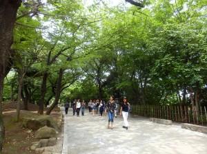 P6111650  ballade dans le parc Asukayama