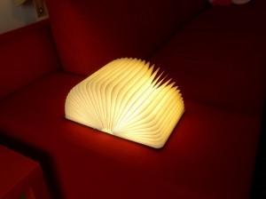 P9171877  lampe
