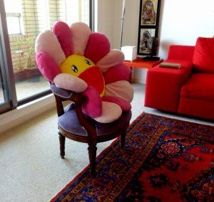 chaise et coussin (2)